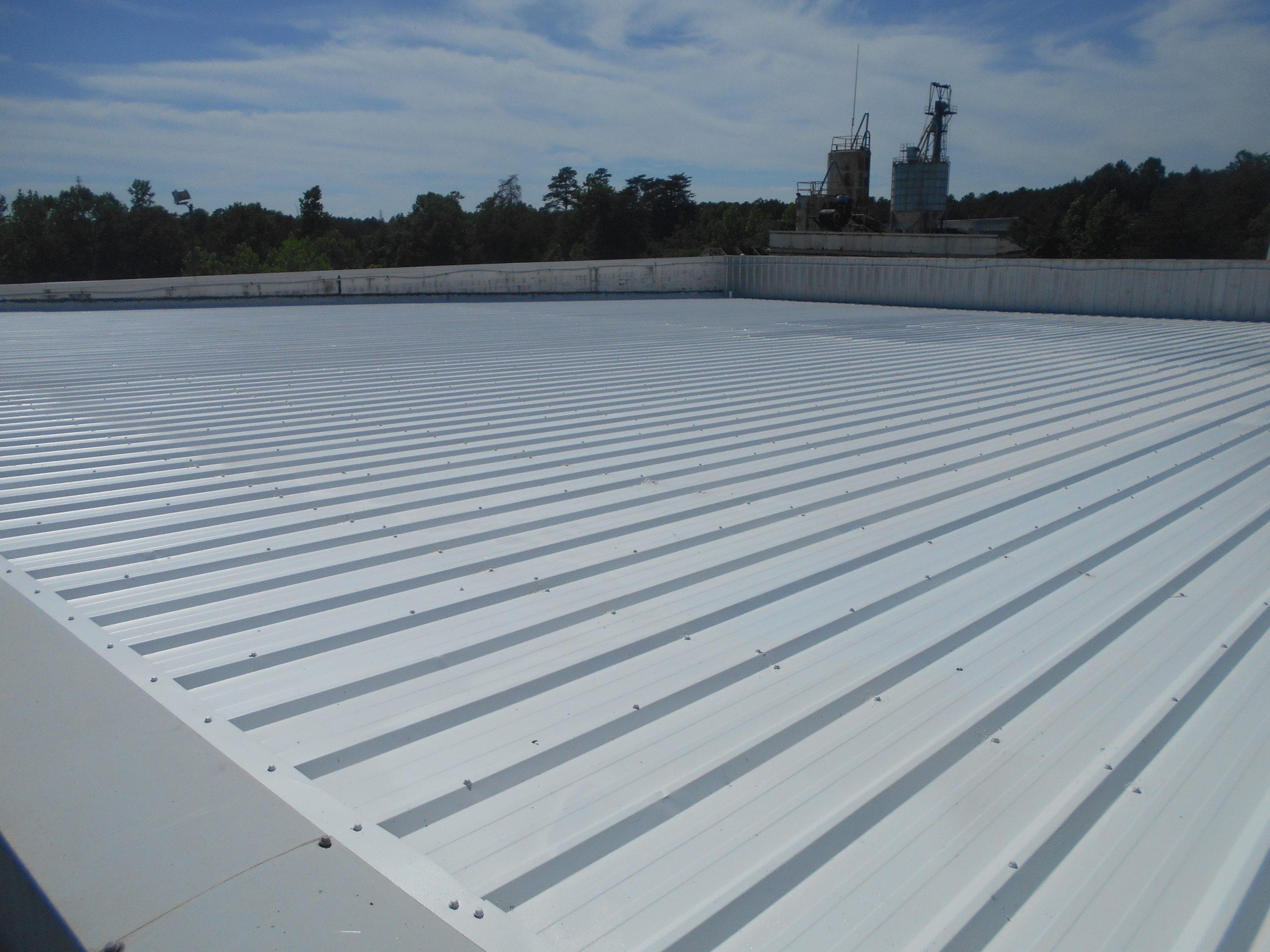 acrylic roof repair columbia sc